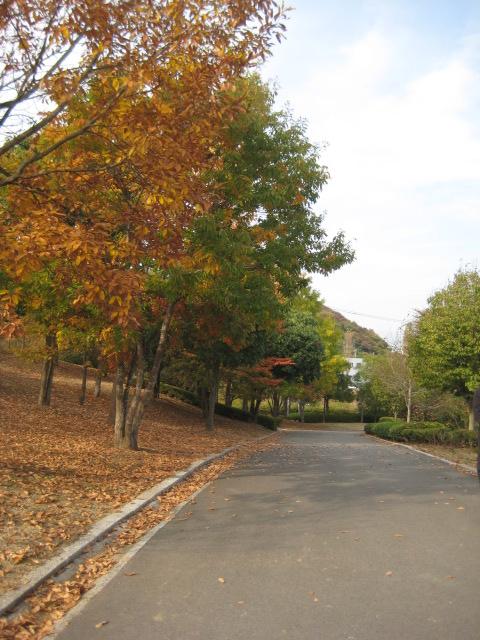 いわき中央公園_5.JPG