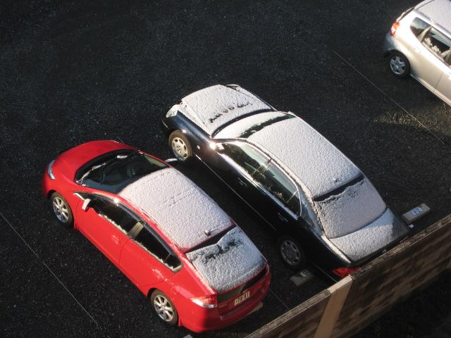 こんなに雪2010.2.2_3.JPG