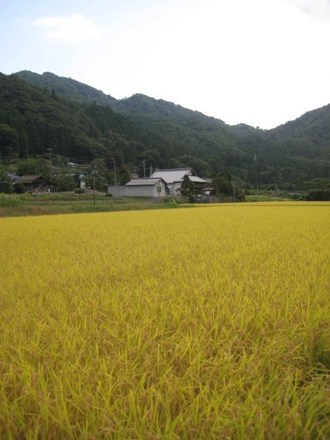 夏井川渓谷_5.JPG